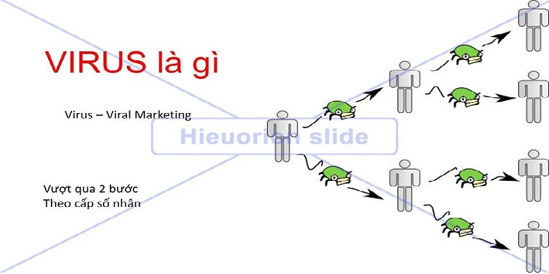 Viral Marketing và Social Network Communications